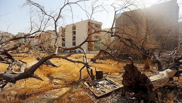 شهرداری شیراز بلای جان باغهای قدیمی/ تخریب باغ برای ساخت محل بازی کودکان!