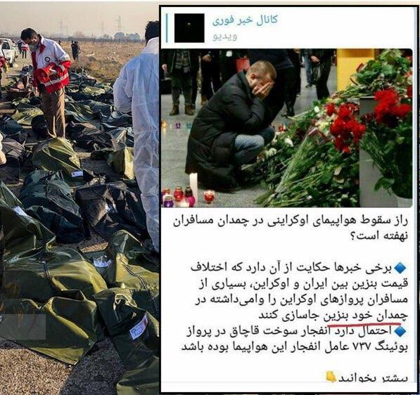 سقوط هواپیمای اوکراین در تهران,اخبار فرهنگی,خبرهای فرهنگی,رسانه