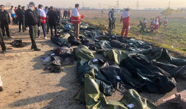 جانباختگان سقوط هواپیمای اوکراینی,اخبار اجتماعی,خبرهای اجتماعی,محیط زیست