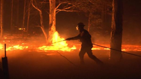 آتشسوزی گسترده در استرالیا,اخبار اجتماعی,خبرهای اجتماعی,محیط زیست