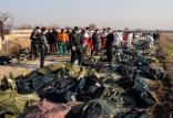 سانحه پرواز اوکراینی,اخبار حوادث,خبرهای حوادث,حوادث