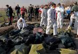 سقوط هواپیمای اوکراینی,اخبار اجتماعی,خبرهای اجتماعی,جامعه