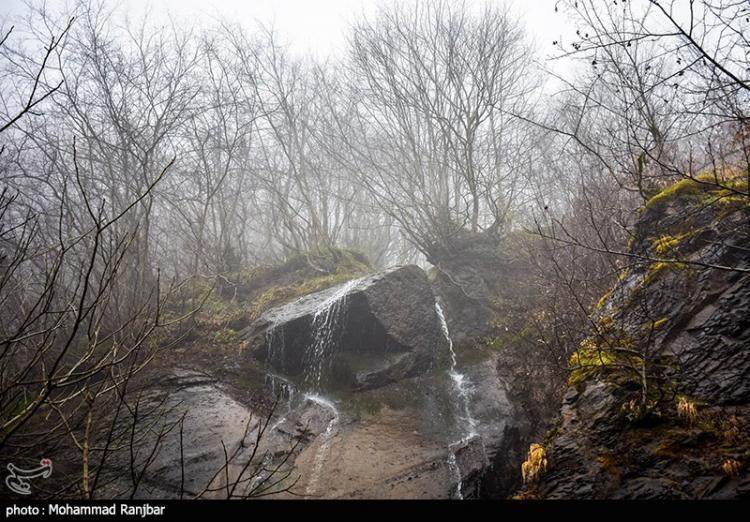 تصاویر دیدنی از روز زمستانی,عکس های زمستان در طبعیت سیاهکل,تصاویر طبعیت سیاهکل