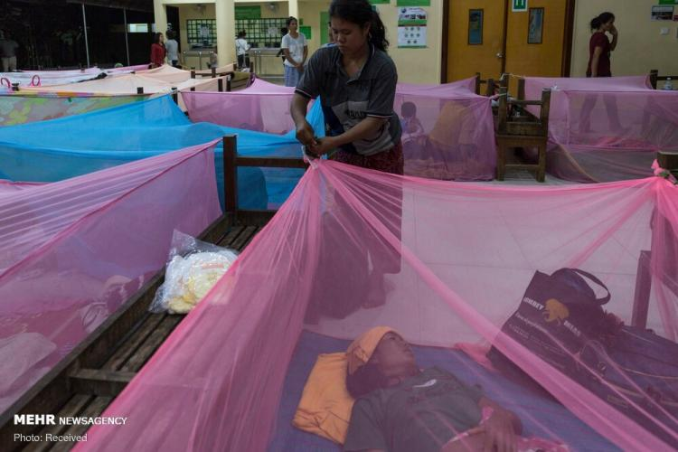 تصاویر تب دنگ در جنوب شرق آسیا,عکس های تب دنگ در جنوب شرق آسیا,تصاویر بیماری تب دنگ