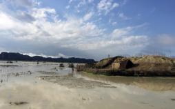 وضعیت کشاورزان سیستان و بلوچستان,اخبار اقتصادی,خبرهای اقتصادی,کشت و دام و صنعت