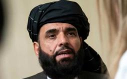 سهیل شاهین,اخبار افغانستان,خبرهای افغانستان,تازه ترین اخبار افغانستان
