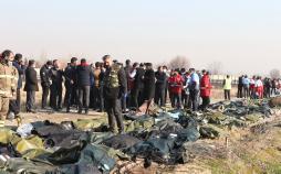 سقوط هواپیمای اوکراینی,اخبار فرهنگی,خبرهای فرهنگی,رسانه