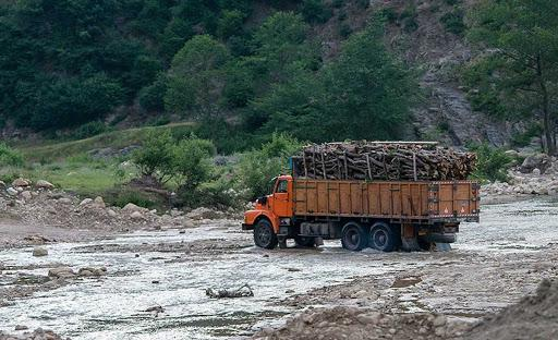افزایش قاچاق چوب در کردستان,اخبار اجتماعی,خبرهای اجتماعی,محیط زیست