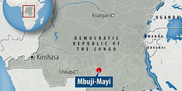 کشف قدیمیترین قارچ جهان در کنگو,اخبار جالب,خبرهای جالب,خواندنی ها و دیدنی ها