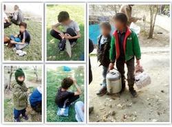 شرطبندی روی نبرد کودکان در جنوب تهران,اخبار اجتماعی,خبرهای اجتماعی,آسیب های اجتماعی