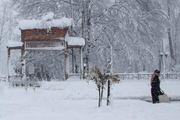 آخرین وضعیت مناطق درگیر با برف سنگین گیلان/ قطعی برق و آب دوسوم روستاهای گیلان
