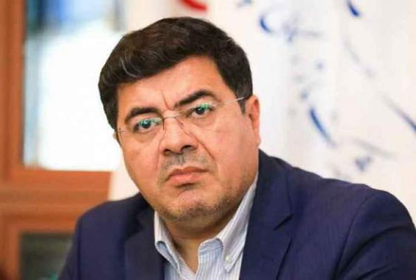 مهدی شریفینیکنفس,اخبار اقتصادی,خبرهای اقتصادی,اقتصاد کلان