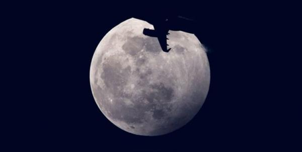ربات معکبی در ماه,اخبار علمی,خبرهای علمی,نجوم و فضا