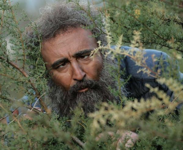 مهران احمدی در پایتخت 6,اخبار صدا وسیما,خبرهای صدا وسیما,رادیو و تلویزیون