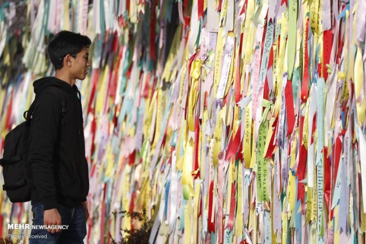 تصاویر سال نو چینی,عکس های سال نو چینی,تصاویری از سال نوی چینی 2020