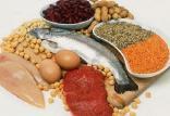 مضرات مصرف بیش از حد پروتئین,اخبار پزشکی,خبرهای پزشکی,تازه های پزشکی