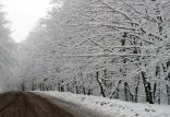 بارش برف,اخبار اجتماعی,خبرهای اجتماعی,وضعیت ترافیک و آب و هوا
