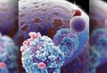 آلیاژی با قابلیت تغییر رنگ,اخبار علمی,خبرهای علمی,اختراعات و پژوهش