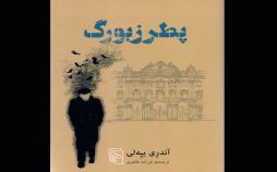 رمان پطرزبورگ,اخبار فرهنگی,خبرهای فرهنگی,کتاب و ادبیات