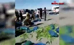 فیلم/ اعتراض کشاورزان کرمانی به قیمت خیار