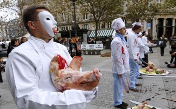 خشونت و ترور به سبک گیاهخواران,اخبار جالب,خبرهای جالب,خواندنی ها و دیدنی ها