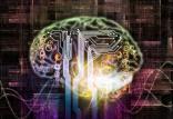 ارتباط برخط اعصاب بیولوژیک و مصنوعی,اخبار علمی,خبرهای علمی,پژوهش
