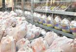 قیمت هر کیلو مرغ در بازار,اخبار اقتصادی,خبرهای اقتصادی,کشت و دام و صنعت