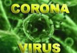 ویروس کرونا,اخبار اجتماعی,خبرهای اجتماعی,جامعه