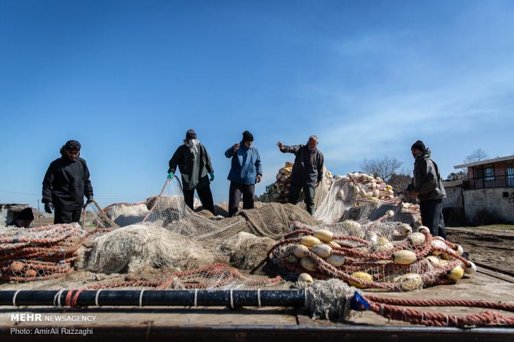 تصاویر مشکلات صیادان مازندرانی,عکس های مشکلات صیادان مازندرانی,تصاویر وضعیت صید ماهی ها در سال 98