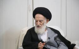 آیت الله شبیری زنجانی,اخبار مذهبی,خبرهای مذهبی,علما