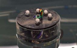 ربات Modboat,اخبار علمی,خبرهای علمی,اختراعات و پژوهش