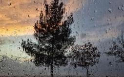 بارش باران,اخبار علمی,خبرهای علمی,اختراعات و پژوهش