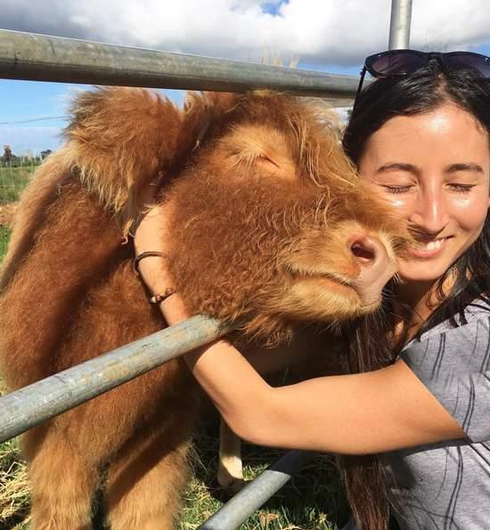 شباهتهای جالب حیوانات به انسان,اخبار جالب,خبرهای جالب,خواندنی ها و دیدنی ها