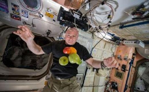 زندگی فضانوردان در ماه,اخبار علمی,خبرهای علمی,نجوم و فضا