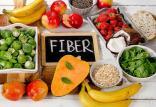 رژیم غذایی پرفیبر,اخبار پزشکی,خبرهای پزشکی,تازه های پزشکی