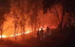 آتش سوزی گسترده چین,اخبار حوادث,خبرهای حوادث,حوادث امروز