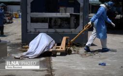 تصاویر مرگ در اثر ویروس کرونا,عکس های تلفات جنگ جهانی با کرونا ویروس,عکس های مرگ و میر در جهان