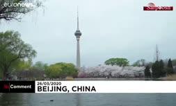 فیلم/ تماشای شکوفههای بهاری پس از پایان قرنطینه در چین