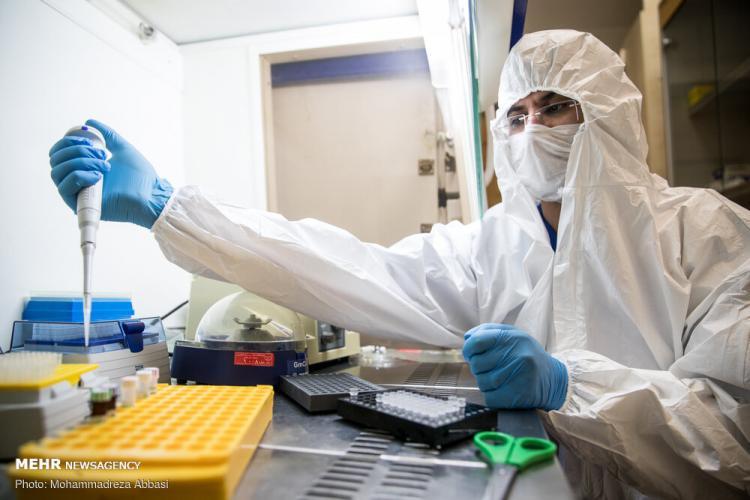 تصاویرمطالعه محققان بر روی ویروس کرونا در ایران,عکس های مطالعه بر روی کرونا,تصاویرپژوهشگاه فناوریهای نوین جهاد دانشگاهیابنسینا