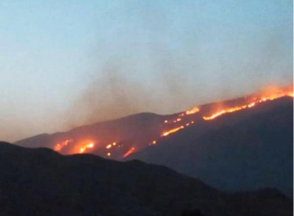آتش سوزی در منطقه خائیز کهگیلویه,اخبار اجتماعی,خبرهای اجتماعی,محیط زیست