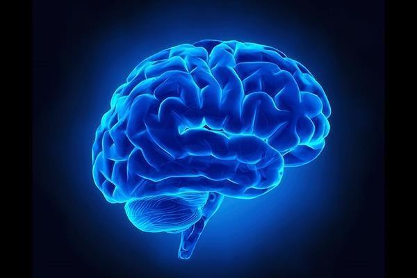 افزایش قدرت مغز با انجام کارهای جدید,اخبار پزشکی,خبرهای پزشکی,تازه های پزشکی