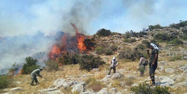 آتش سوزی در جنگل های پاوه,اخبار اجتماعی,خبرهای اجتماعی,محیط زیست
