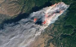 پیش بینی آتش سوزی در جنگلها با هوش مصنوعی,اخبار علمی,خبرهای علمی,طبیعت و محیط زیست