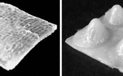 تکنیک چاپ سهبعدی برای کاربردی شدن رباتهای تغییرشکل دهنده,اخبار علمی,خبرهای علمی,اختراعات و پژوهش
