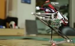 رباتی با قابلیت انجام حرکت ژیمناستیک,اخبار علمی,خبرهای علمی,اختراعات و پژوهش