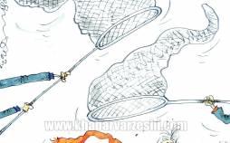 کاریکاتور در مورد تلاش سرخابی ها برای رضایت گرفتن از شفر و برانکو,کاریکاتور,عکس کاریکاتور,کاریکاتور ورزشی