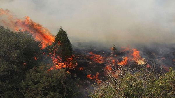 مرگ امدادگر هلال احمر درعملیات مهار آتشسوزی جنگلهای اردل