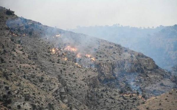 آتش سوزی در ارتفاعات پاوه,اخبار اجتماعی,خبرهای اجتماعی,محیط زیست