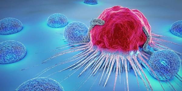 سلول های سرطانی درخشان,اخبار پزشکی,خبرهای پزشکی,تازه های پزشکی