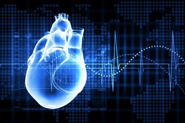 بیماری قلبی وعروقی,اخبار پزشکی,خبرهای پزشکی,تازه های پزشکی